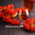 Tinktur von Fruechten roter Eberesche